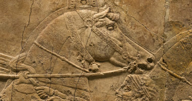 de assyriske løvejaktrelieffene i British Museum