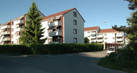 Boler-Bolerskogen-DSC_0161